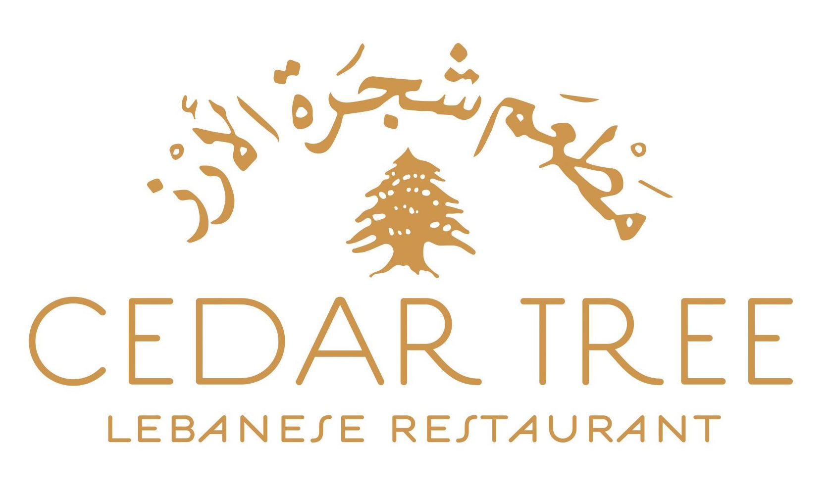 new cedar tree logo
